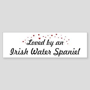 Loved By Irish Water Spaniel Bumper Sticker