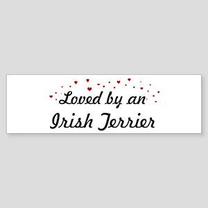Loved By Irish Terrier Bumper Sticker