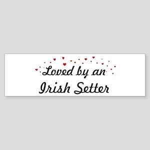 Loved By Irish Setter Bumper Sticker