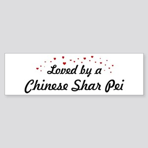 Loved By Chinese Shar Pei Bumper Sticker