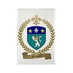 MASSARD Family Crest Rectangle Magnet (10 pack)