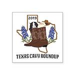 Texas Cavy Round Up Sticker