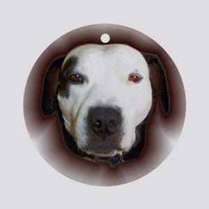 PIT BULL FACE Ornament (Round)