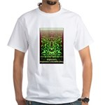Enlightenment Is Collection White T-Shirt