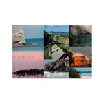 Bermuda Collage by Khoncepts Rectangle Magnet (100