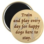Train and Play Magnet