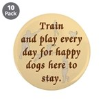 Train and Play 3.5