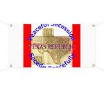 Texas-1 Banner