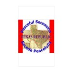 Texas-1 Rectangle Sticker 50 pk)