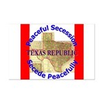 Texas-1 Mini Poster Print