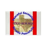 Texas-1 Rectangle Magnet (10 pack)