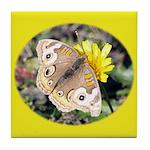 Butterfly on Flower Tile Coaster