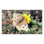 Butterfly on Flower Rectangle Sticker 50 pk)