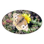 Butterfly on Flower Oval Sticker