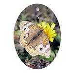 Butterfly on Flower Oval Ornament