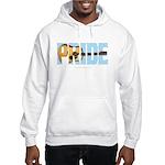 Guitar Pride Hooded Sweatshirt