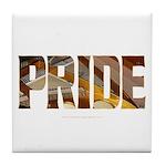 Piano Pride 2 Tile Coaster