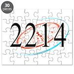 2214 Logo Puzzle