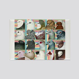 Twenty Pigeon Heads Rectangle Magnet