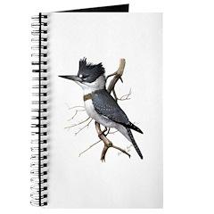 Fuertes' Kingfisher Journal