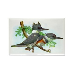 Belted Kingfisher Rectangle Magnet