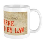 Bill of Rights is Void Mug