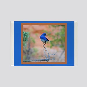 Blue Bird Rectangle Magnet