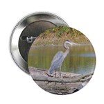 "Blue Heron 2.25"" Button"