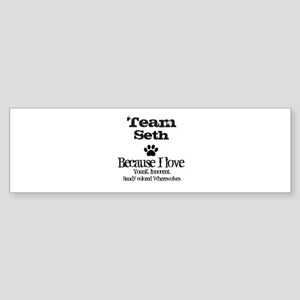 Team Seth Bumper Sticker (10 pk)