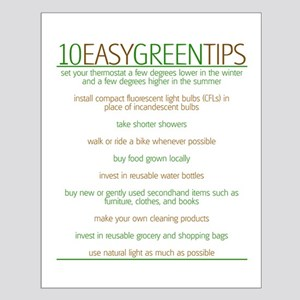 Environmentalist Go Green Tip Small Poster