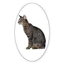 Savannah Cat Oval Sticker
