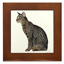 Savannah Cat Framed Tile