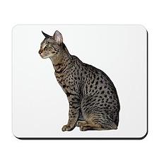 Savannah Cat Mousepad