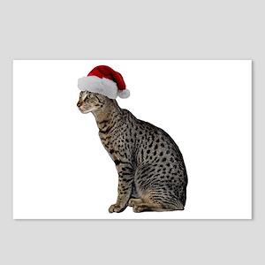 Savannah Cat Christmas Postcards (Package of 8)