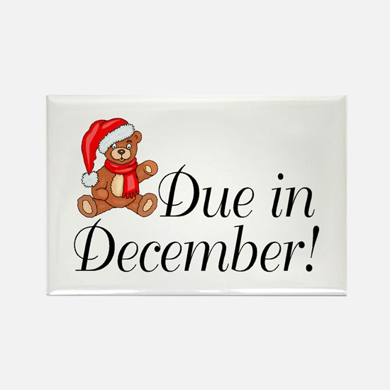 Due In December Rectangle Magnet