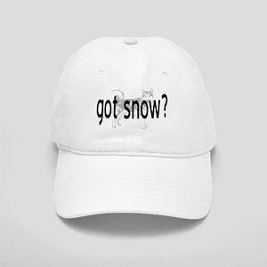 Got Snow? Cap