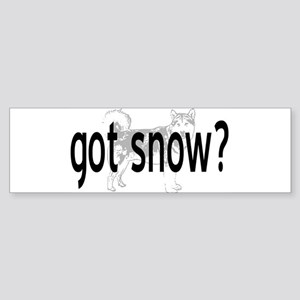 Got Snow? Bumper Sticker