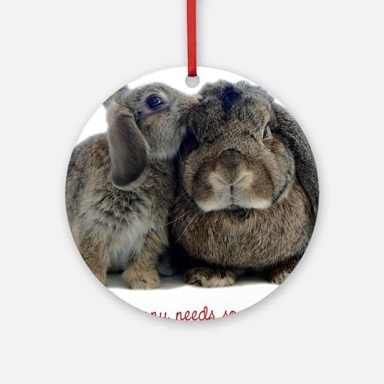 Everybunny needs somebunny Ornament (Round)