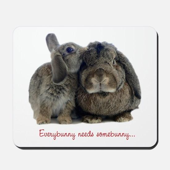 Everybunny needs somebunny Mousepad
