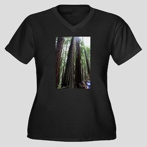 Muir Woods, California Women's Plus Size V-Neck Da