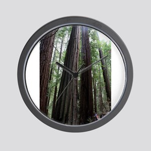 Muir Woods, California Wall Clock