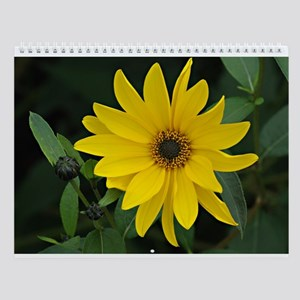 12 Nature pictures Wall Calendar