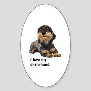 I Love My Dachshund Oval Sticker