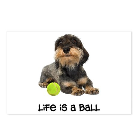 Wirehaired Dachshund Life Postcards (Package of 8)