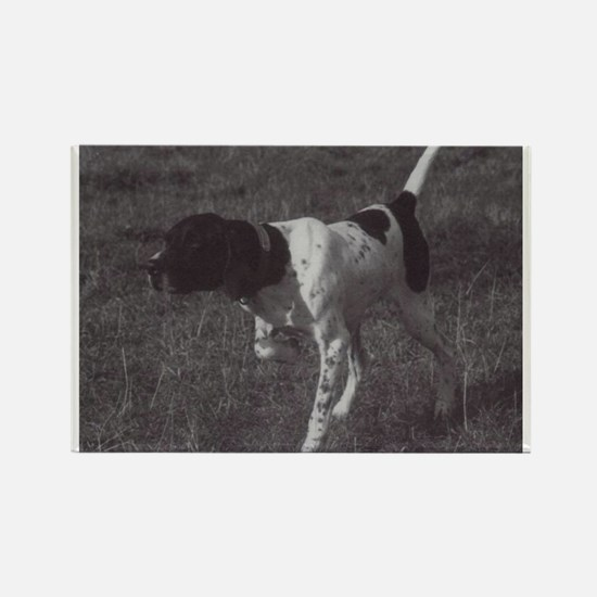 Funny Pointer Rectangle Magnet (100 pack)