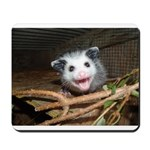Opossum mousepad