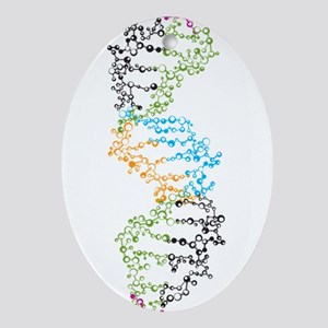 DNA Oval Ornament