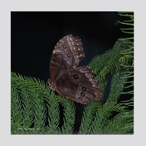 Brown Butterfly Tile Coaster