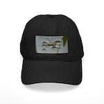 Water Strider Black Cap