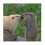 Groundhog Siblings Tile Coaster